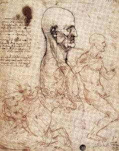 Leonard de Vinci Etude de physio nomie humaine et cavaliers 25x21 vers 1503 plume encre et sanguineGalerie de l'Academie Venise