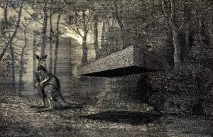 Daniel Arsham, 2009, Kangourou, gouache sur calque, 125x100