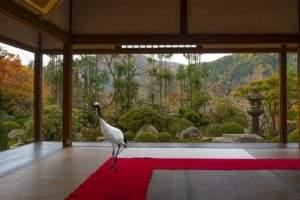 Karen Knoor, la journee du gran d sage, japon, photographie
