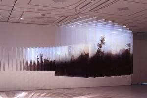 Nobuhiro Nakanishi, 2010, Forêt