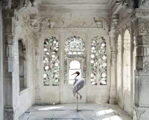 Karen Knorr, Inde, 2008-2014, une place comme Amravati, photographie