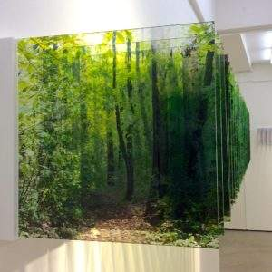 Nobuhiro Nakanishi forêt