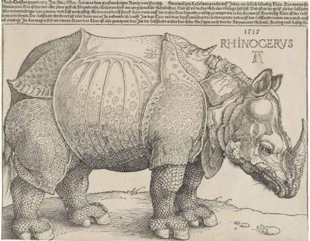 Gilbert CROUÉ –  Le rhinocéros de Dürer